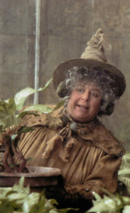 Professor Sprout makes sure all her students are wearing their earmuffs before working on mandrakes.  Safety first!
